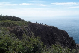 Bay-of-Fundy-Bicycle-Tour-2018-ACC-0086