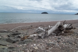 Bay-of-Fundy-Tour-2011-ACC-0020