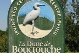 Acadian-Coast-Tour-2010-Dodson-Dietrich-0008