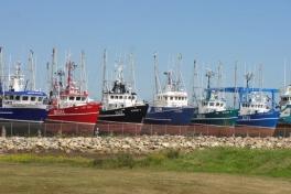 Acadian-Coast-Tour-2010-Dodson-Dietrich-0019