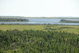 Acadian-Coast-Tour-2010-Dodson-Dietrich-0025