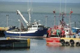 Acadian-Coast-Tour-2010-Dodson-Dietrich-0030