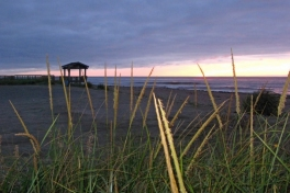 Acadian-Coast-Tour-2010-Unknown-0001