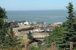 Bay-of-Fundy-Tour-2008-ACC-0004