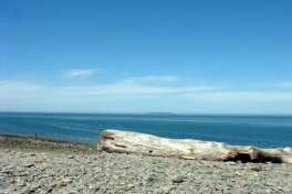 Bay-of-Fundy-Tour-2008-ACC-0007