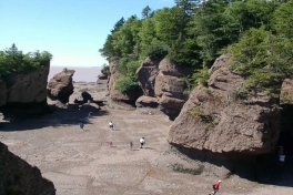Bay-of-Fundy-Tour-2008-ACC-0017