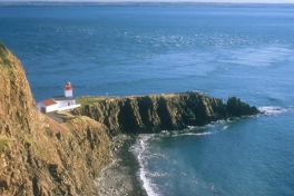 Bay-of-Fundy-Tour-2008-ACC-0022