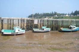 Bay-of-Fundy-Tour-2008-ACC-0031
