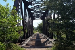 Bay-of-Fundy-Tour-2011-ACC-0073