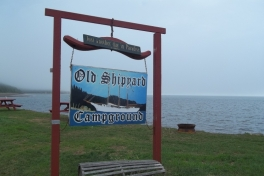 Bay-of-Fundy-Tour-2013-ACC-0015