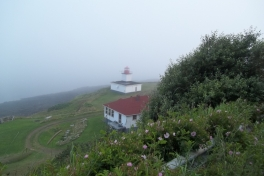 Bay-of-Fundy-Tour-2013-ACC-0021