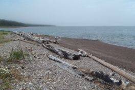 Bay-of-Fundy-Tour-2013-ACC-0013