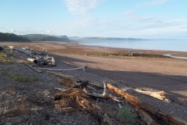 Bay-of-Fundy-Tour-2013-ACC-0018