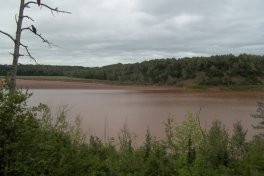 Bay-of-Fundy-Tour-2013-ACC-0050