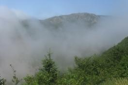 Cape-Breton-Island-Tour-2009-ACC-0058