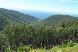 Cape-Breton-Island-Tour-2015-ACC-0122