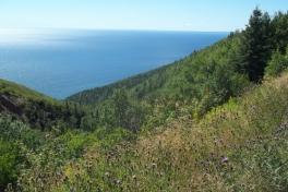 Cape-Breton-Island-Tour-2016-ACC-0055