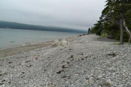 Cape-Breton-Island-Tour-2018-ACC-0071