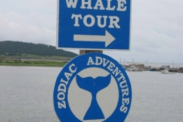 Cape-Breton-Island-Tour-1995-2008-ACC-0019