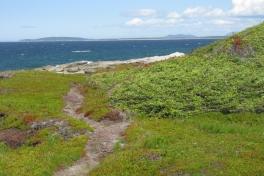 Newfoundland-Tour-2010-ACC-0057