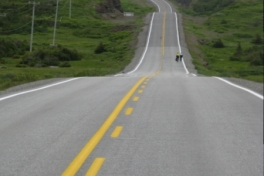 Newfoundland-Tour-2010-ACC-0100