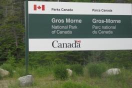 Newfoundland-Tour-2010-Paul-Nemy-0011