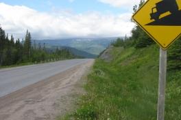 Newfoundland-Tour-2010-Paul-Nemy-0013