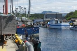 Newfoundland-Tour-2010-Paul-Nemy-0016