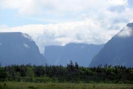 Newfoundland-Tour-2010-Paul-Nemy-0028