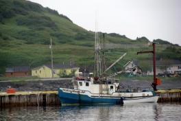 Newfoundland-Tour-2010-Paul-Nemy-0045