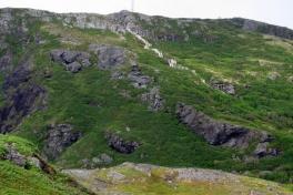 Newfoundland-Tour-2010-Paul-Nemy-0049