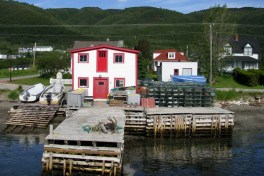 Newfoundland-Tour-2010-ACC-0018
