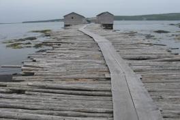 Newfoundland-Tour-2012-ACC-0006