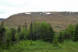Newfoundland-Tour-2013-ACC-0010