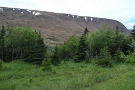 Newfoundland-Tour-2013-ACC-0011