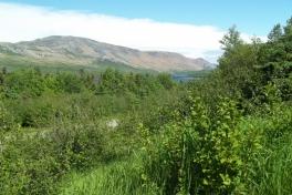 Newfoundland-Tour-2013-ACC-0013