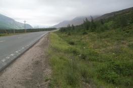 Newfoundland-Tour-2014-ACC-0021