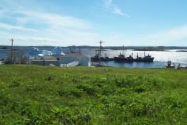 Newfoundland-Tour-2014-ACC-0172