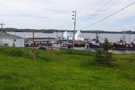Newfoundland-Tour-2014-ACC-0189