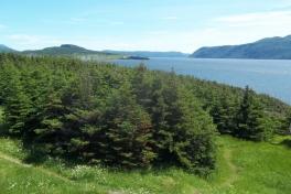 Newfoundland-Tour-2016-ACC-0030