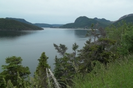 Newfoundland-Tour-2017-ACC-0008