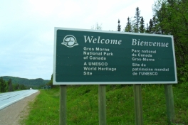 Newfoundland-Tour-2019-ACC-0012