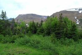 Newfoundland-Tour-2019-ACC-0025