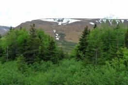 Newfoundland-Tour-2019-ACC-0026