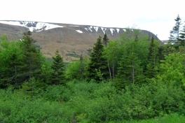 Newfoundland-Tour-2019-ACC-0027