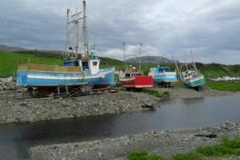 Newfoundland-Tour-2019-ACC-0046