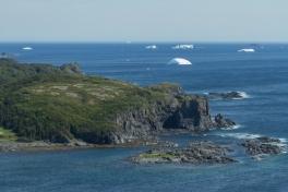 Newfoundland-Tour-2017-Alex-Svetlitsky-0032