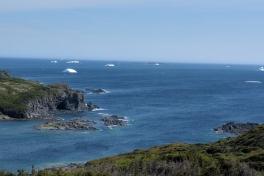 Newfoundland-Tour-2017-Gary-0007