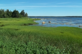 Nova-Scotia-Eastern-Shore-Tour-2016-ACC-0064