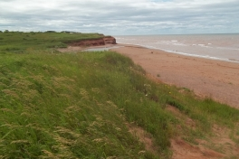 Prince-Edward-Island-West-Tour-2016-ACC-0070